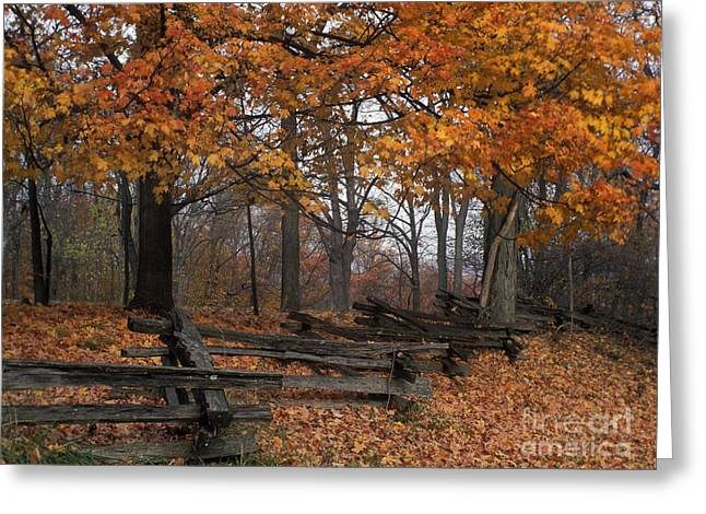 Indiana Autumn Greeting Cards - Split Rail Autumn - FM000085 Greeting Card by Daniel Dempster