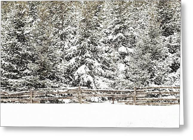 Split Rail Fence Greeting Cards - Split Rail Blizzard Greeting Card by Barbara McMahon
