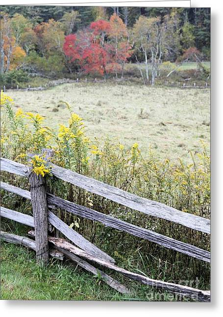 Split Rail Fence Greeting Cards - Split Rail Fence and Fall foilage Greeting Card by John Harmon