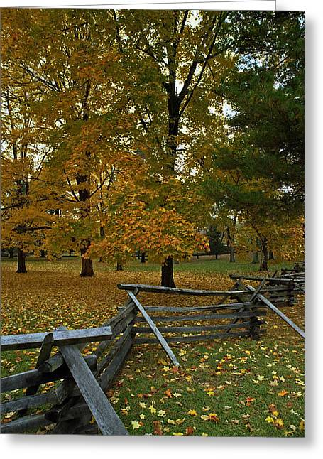 Pa Greeting Cards - Split Rail Parkland Greeting Card by Skip Willits