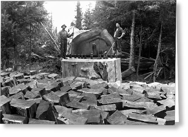 Loggers Greeting Cards - Splitting Redwood Shingle Bolts 1890 Greeting Card by Daniel Hagerman