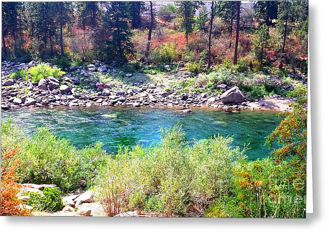 Spokane Greeting Cards - Spokane River Greeting Card by Ana Lusi