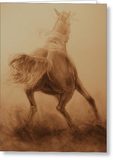 Quarter Horses Greeting Cards - Spooked Greeting Card by Jani Freimann