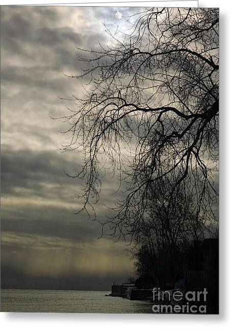 Gnarly Greeting Cards - Spooky Landscape Greeting Card by Jocelyn Ball