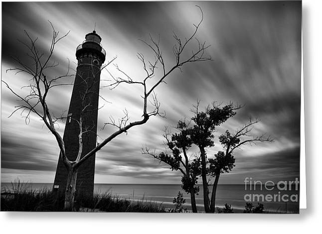 Pure Michigan Greeting Cards - Spooky Little Sable Greeting Card by Todd Bielby
