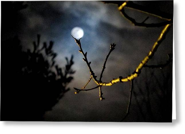 Spooky Moon Greeting Card by Donnie Freeman