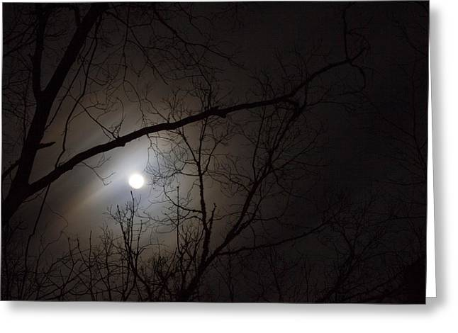 Winter Night Greeting Cards - Spooky Night Greeting Card by Robert Kinser