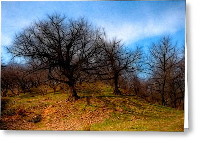 Kyiv Greeting Cards - Spooky Trees Greeting Card by Matthew Shalvatis