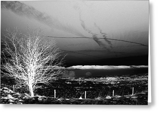 Spooky Winter Landscape Greeting Card by Online Presents