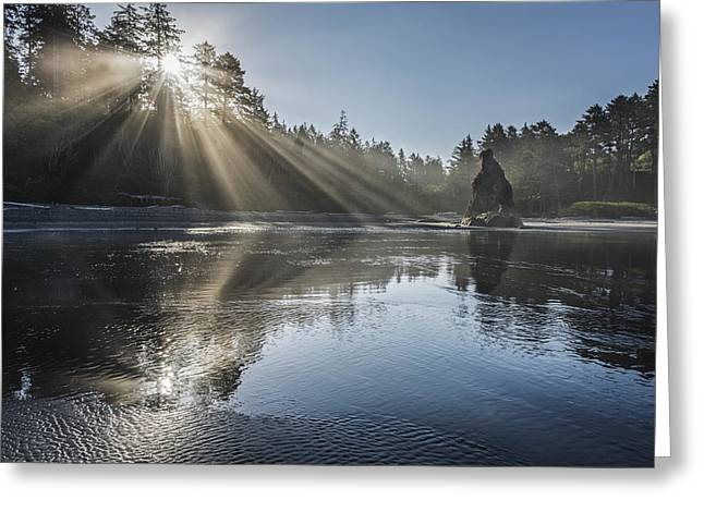 Olympic National Park Greeting Cards - Spoon of Morning Light Greeting Card by Jon Glaser