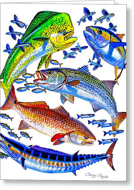 Mullet Greeting Cards - Sportfish Collage Greeting Card by Carey Chen