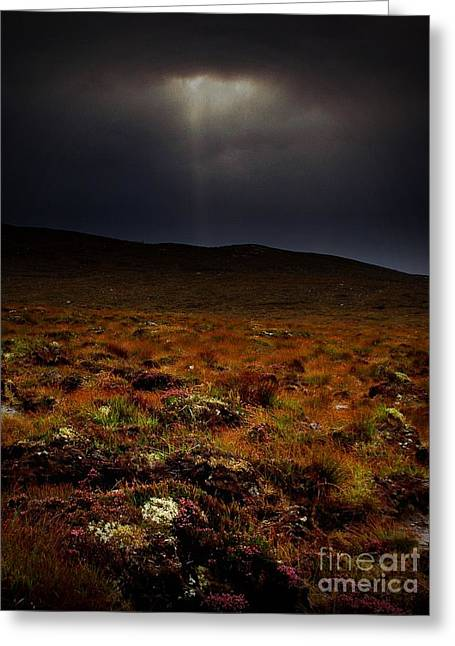 Meadow Shaft Greeting Cards - Spotlight on the Highlands Greeting Card by Henry Kowalski