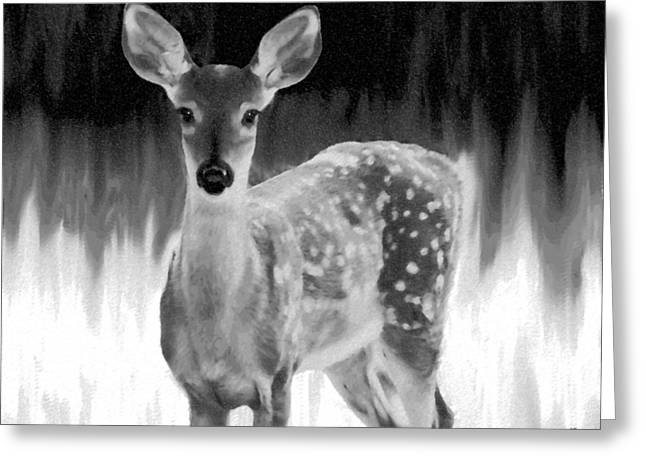 Treatment Digital Art Greeting Cards - Spotted Fawn Greeting Card by Will Borden