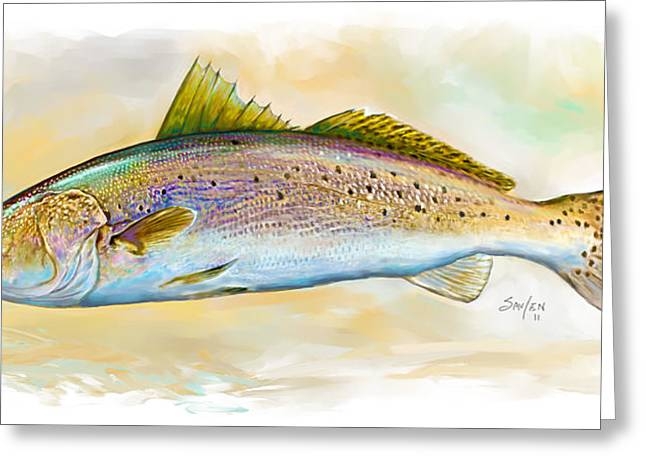 Speckled Trout Greeting Cards - Spotted Trout Illustration Greeting Card by Mike Savlen