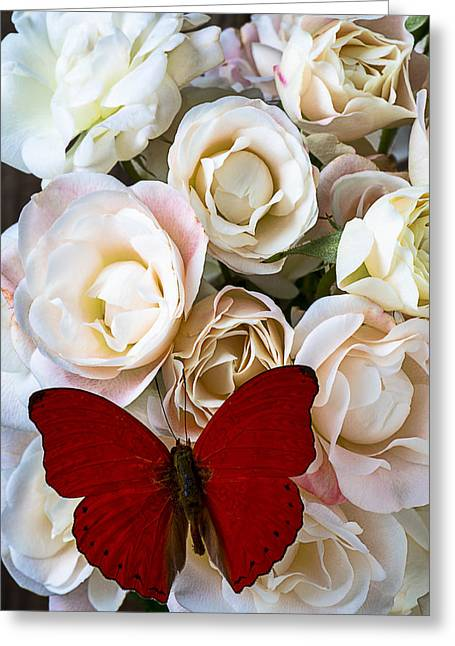 Red Petals Greeting Cards - Spray roses and red butterfly Greeting Card by Garry Gay