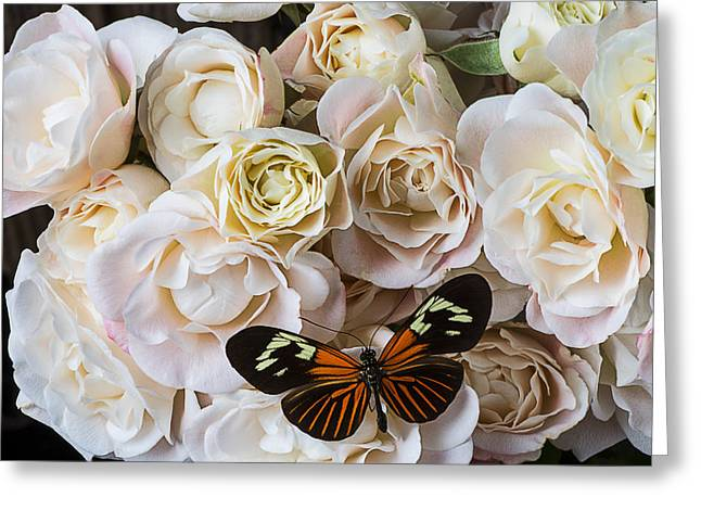 Mini Photographs Greeting Cards - Spray roses Greeting Card by Garry Gay
