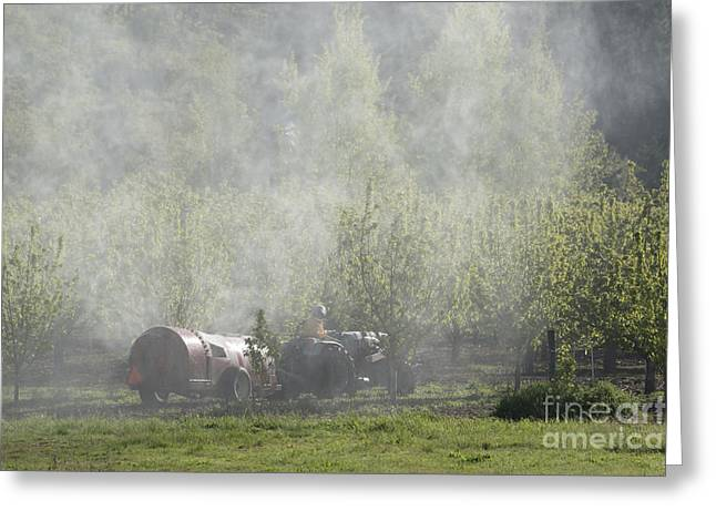 Orchard Greeting Cards - Spraying the Orchard Greeting Card by Mike  Dawson