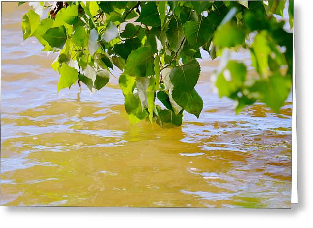 Spring Floods Paintings Greeting Cards - Spring 4 Greeting Card by Lanjee Chee