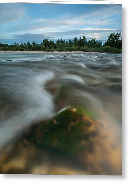 Rapids Greeting Cards - Spring afternoon Greeting Card by Davorin Mance