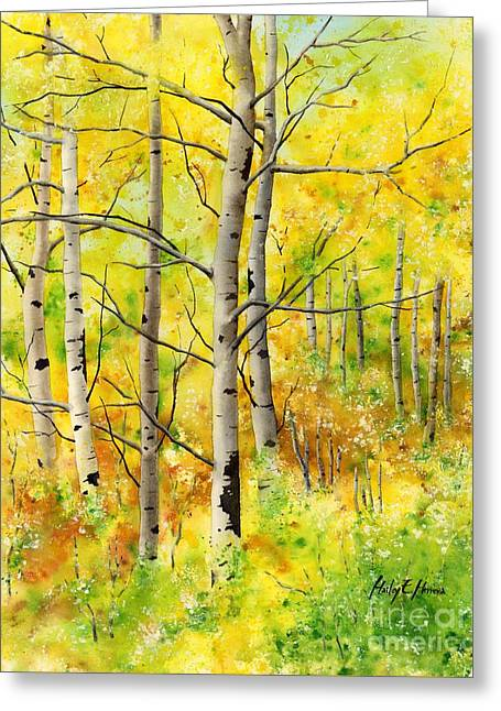 Early Spring Greeting Cards - Spring Aspens Greeting Card by Hailey E Herrera