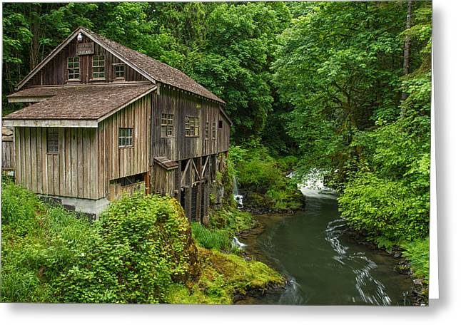Cedar Creek Greeting Cards - Spring at Cedar Creek Grist Mill Greeting Card by Patricia  Davidson