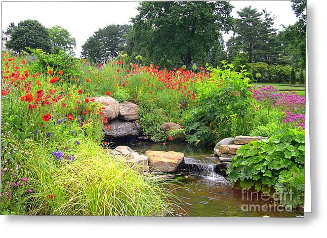 Stream Greeting Cards - Spring at Chanticleer Greeting Card by Addie Hocynec
