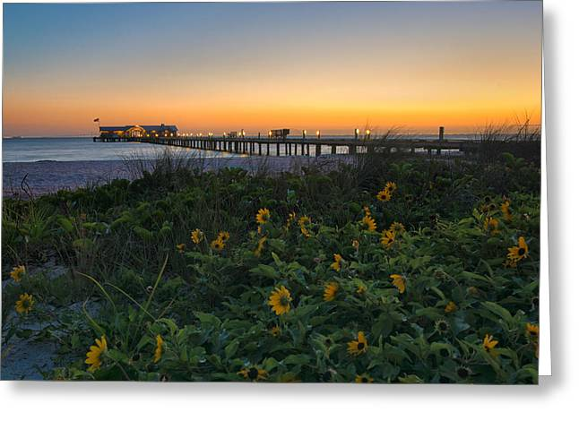 City Pier Greeting Cards - Spring at City Pier Greeting Card by Darylann Leonard Photography
