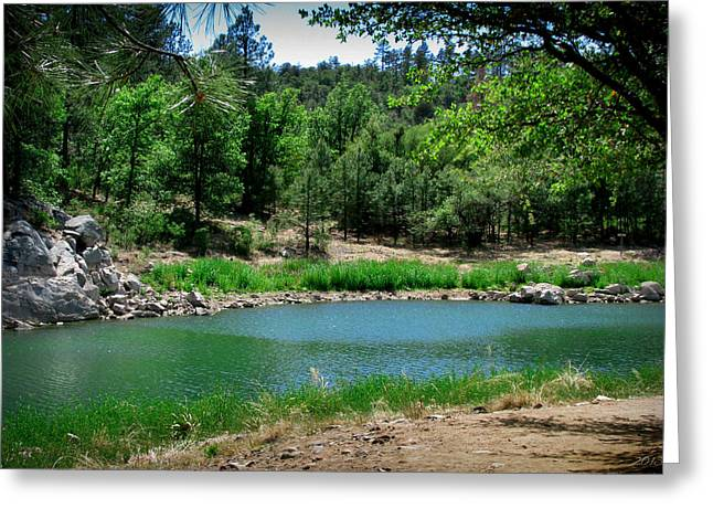 Prescott Greeting Cards - Spring at Goldwater Lake Greeting Card by Aaron Burrows
