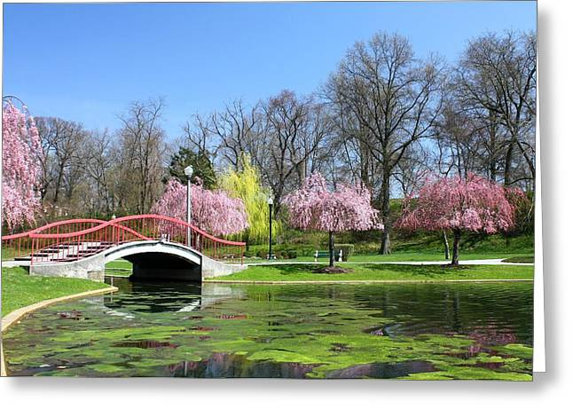 Italian Lake Greeting Cards - Spring at Italian Lake Greeting Card by Lori Deiter