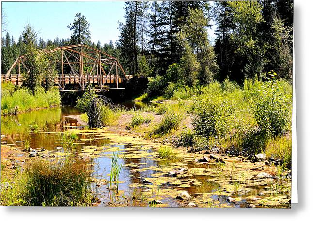 Spokane Greeting Cards - Spring at Riverside Park Greeting Card by Ana Lusi