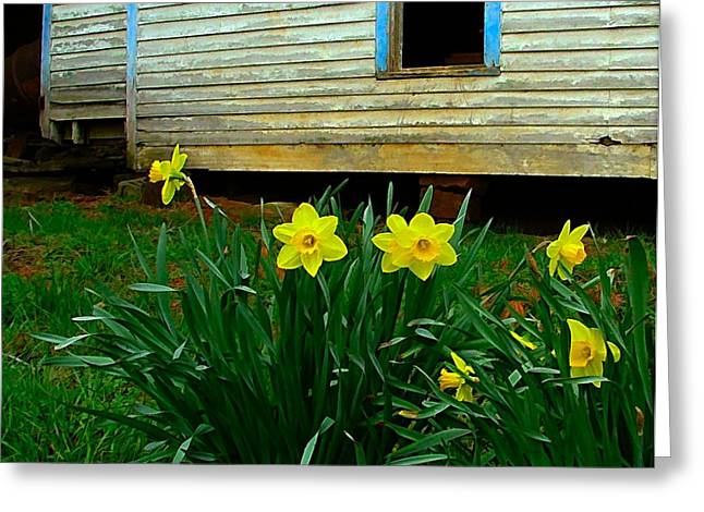 Julie Riker Dant ography Photographs Greeting Cards - Spring at the Old Home Place Greeting Card by Julie Dant