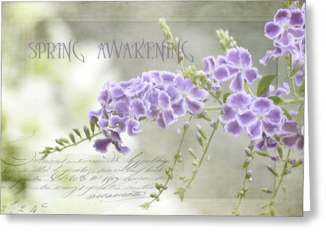 Soft Tones Greeting Cards - Spring Awakening Greeting Card by Julie Palencia