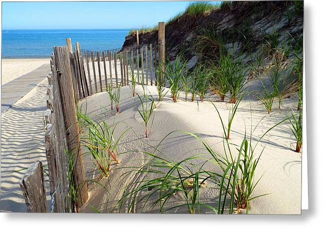 East Dennis Greeting Cards - Spring Beach Greeting Card by Dianne Cowen
