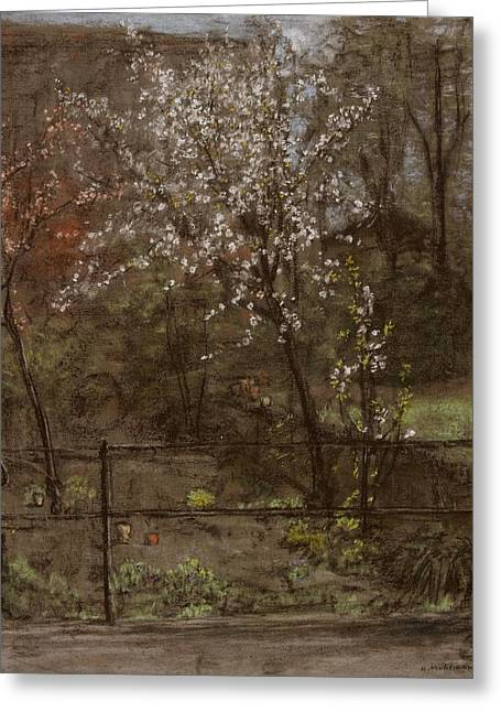 Fence Pastels Greeting Cards - Spring Blossoms Greeting Card by Henry Muhrmann