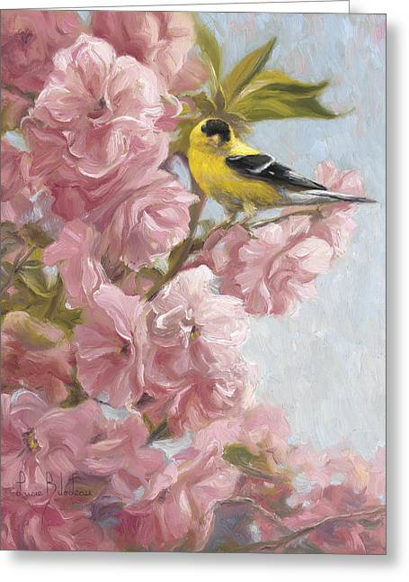 American Goldfinch Greeting Cards - Spring Blossoms Greeting Card by Lucie Bilodeau