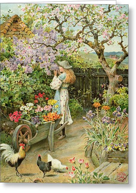 Back Yard Birds Greeting Cards - Spring Blossoms Greeting Card by William Stephen Coleman