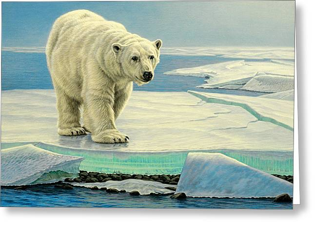 Polar Bears Greeting Cards - Spring Break Greeting Card by Paul Krapf