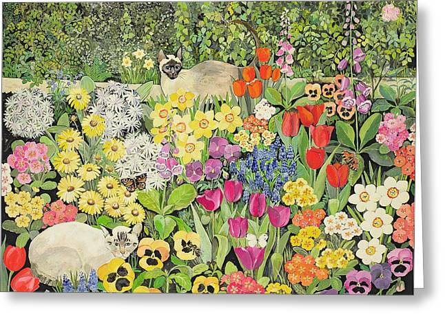 Foxglove Flowers Paintings Greeting Cards - Spring Cats Greeting Card by Hilary Jones