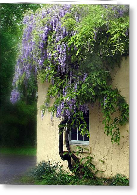 Window Panes Greeting Cards - Spring Charm Greeting Card by Jessica Jenney