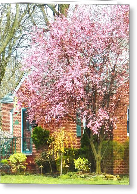 Flowering Trees Greeting Cards - Spring - Cherry Tree by Brick House Greeting Card by Susan Savad