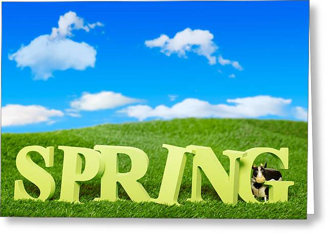 Green Grass Blue Sky Greeting Cards - Spring Greeting Card by Amanda And Christopher Elwell