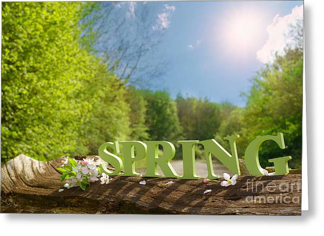 Country Lanes Greeting Cards - Spring Landscape Greeting Card by Amanda And Christopher Elwell