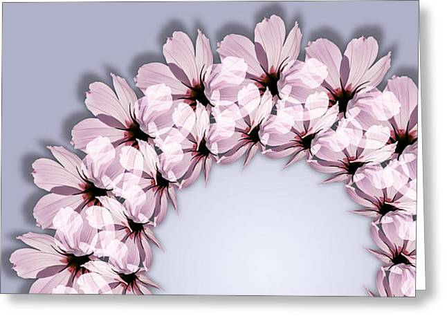 Esotericism Greeting Cards - Spring Cosmos Greeting Card by Ilse Geitmann