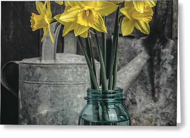 Spring Daffodil Flowers Greeting Card by Edward Fielding