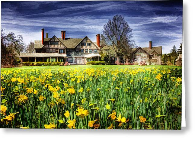 Spring Bulbs Greeting Cards - Spring Daffodils at Bayard Cutting Greeting Card by Vicki Jauron