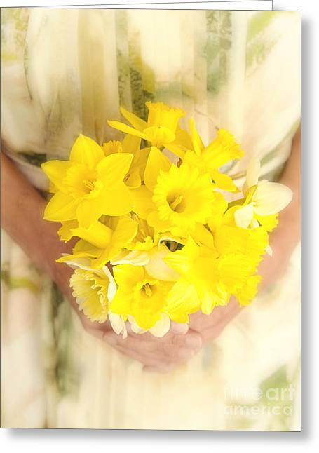 Legs Photographs Greeting Cards - Spring Daffodils Greeting Card by Edward Fielding