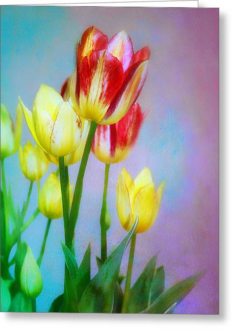 Uncut Greeting Cards - Spring Dance - Tulips  Greeting Card by Nikolyn McDonald