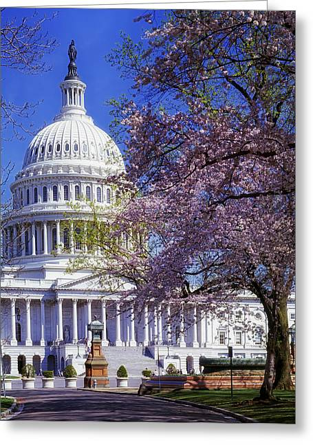 United States Capitol Greeting Cards - Spring Day at the United States Capitol  Greeting Card by Mountain Dreams