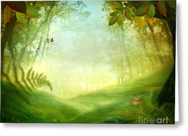 Golden Summer Grass Greeting Cards - Spring design - Forest meadow Greeting Card by Mythja  Photography