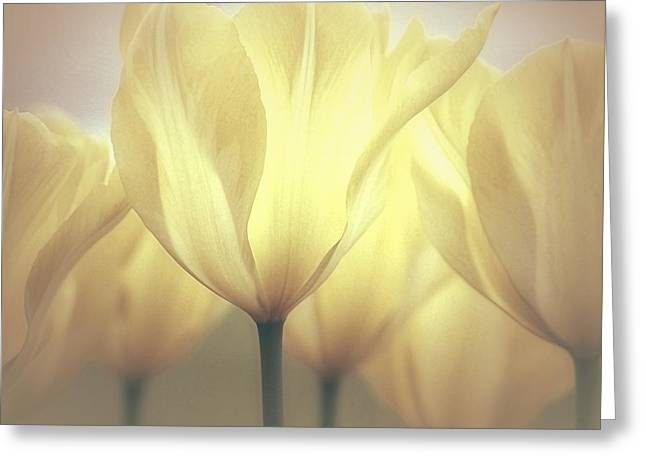 Fantasy World Greeting Cards - Spring Dreaming Greeting Card by  The Art Of Marilyn Ridoutt-Greene